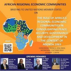 Africa UN briefing 2014 thumbnail